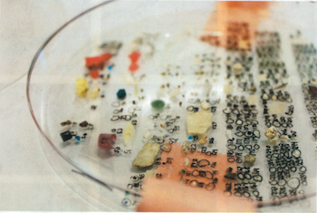 Microplastics counting dish
