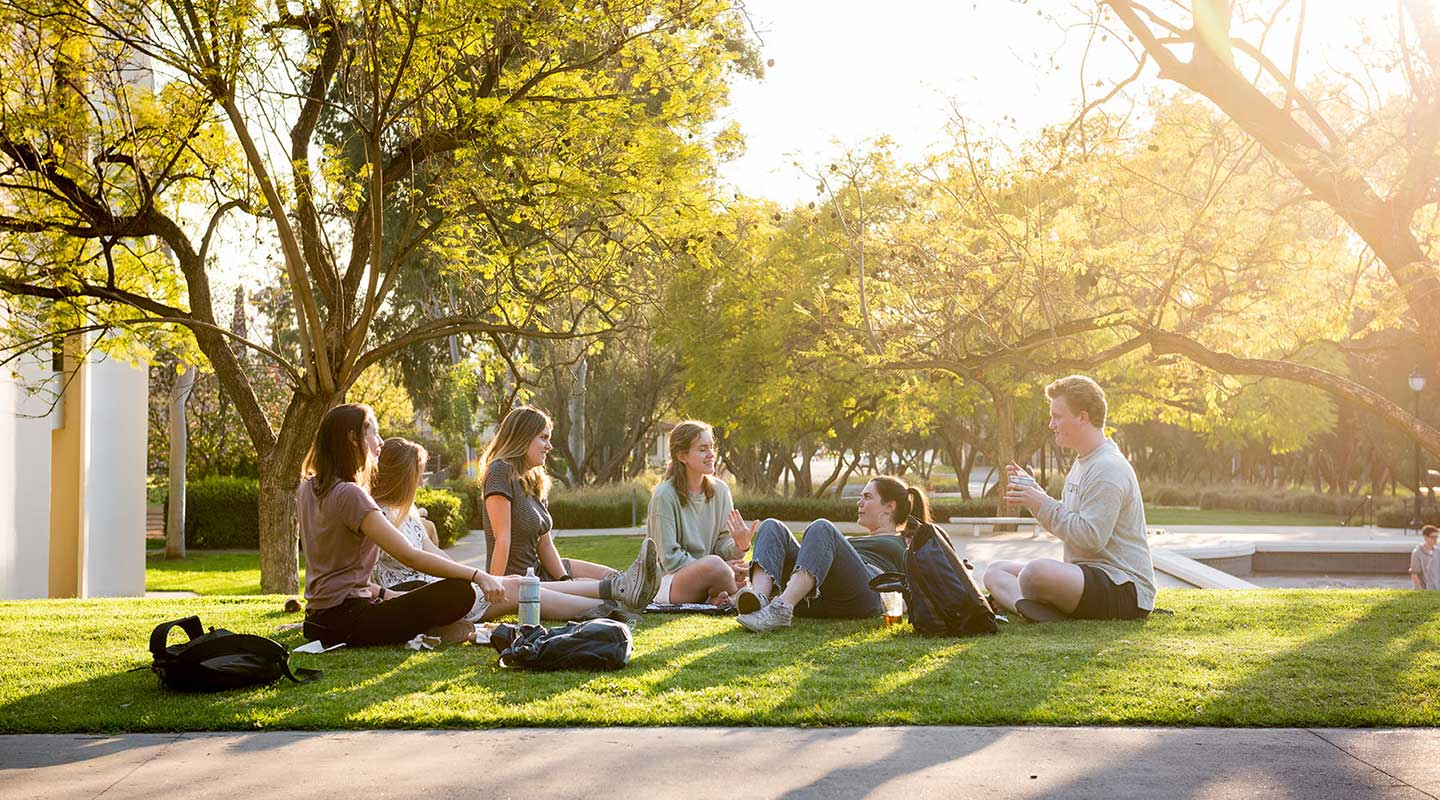 Students hanging out on the grass on campus