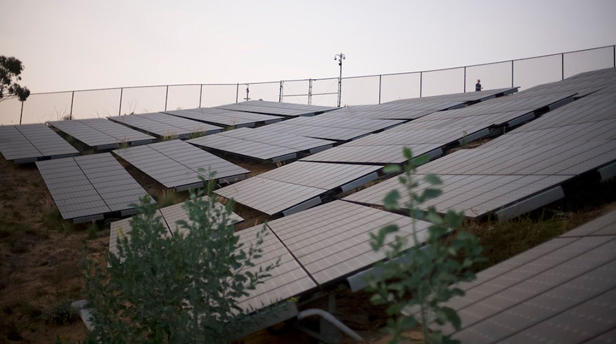 solar panels on the Oxy campus