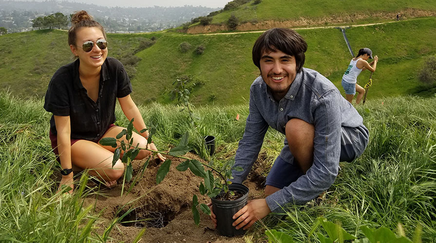 Students planting in the earth