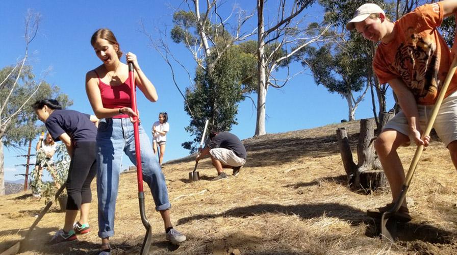 students doing environmental volunteer work