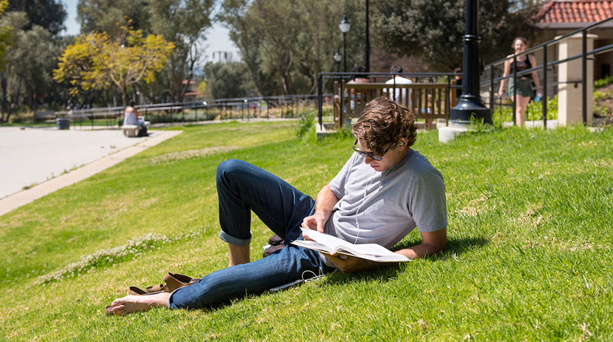 Student studying on the campus lawn