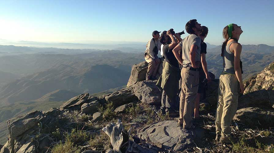 Students on a mountainside surveying the landscape
