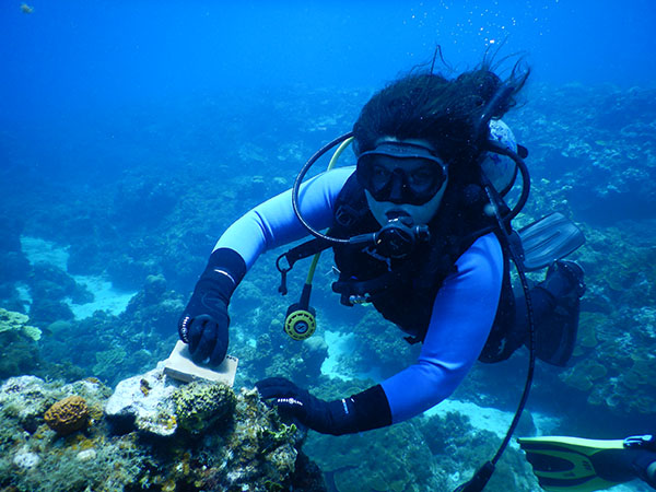 Deep sea diving in Jamaica