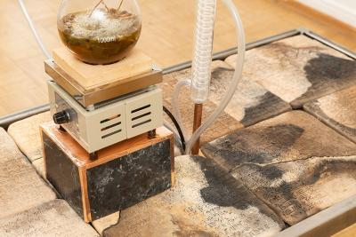 Photo of Candice Lin's exhibition, The Inscrutable Speech of Objects
