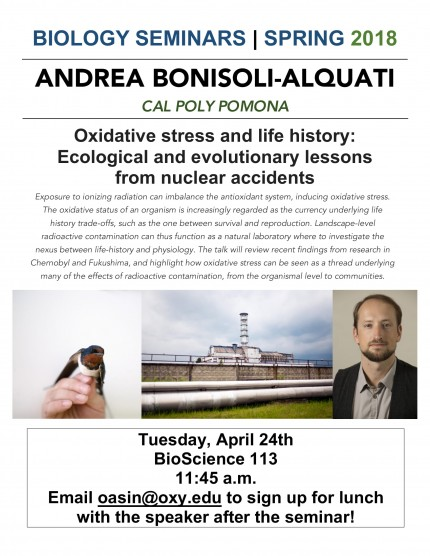 Image for Andrea Bonisoli-Alquati - Oxidative stress and life history: Ecological and evolutionary lessons from nuclear accidents