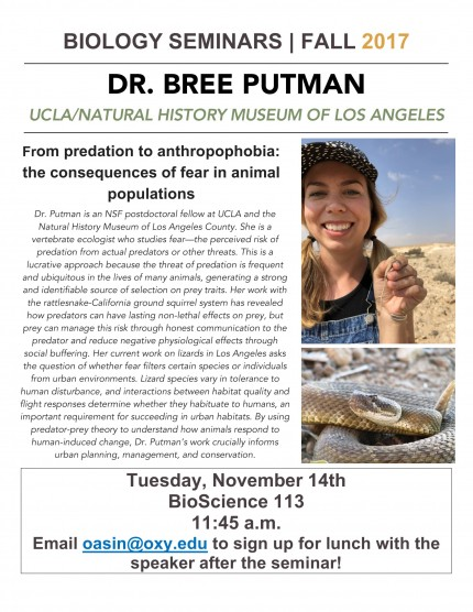 Image for Dr. Bree Putman - From predation to anthropophobia: the consequences of fear in animal populations