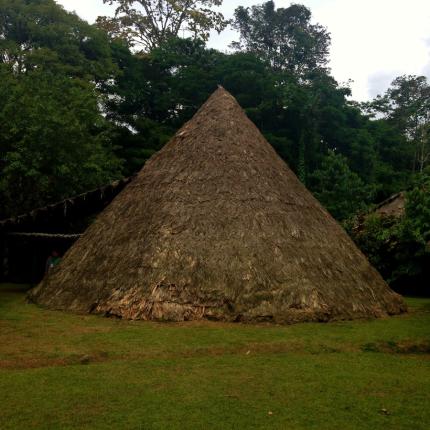 Image for June 3, 2014 - Ditsowu, Talamanca, Costa Rica