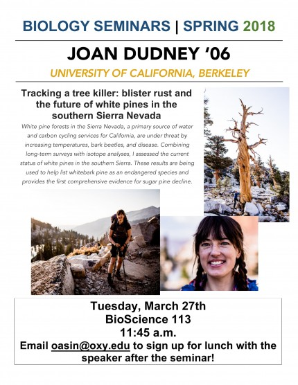 Image for Joan Dudney '06 - Tracking a tree killer: blister rust and the future of white pines in the southern Sierra Nevada