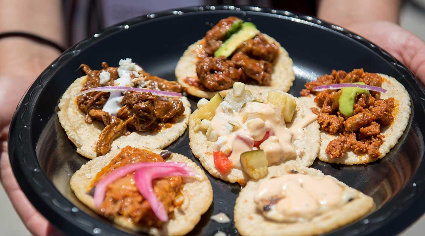 A plate of delicious tacos