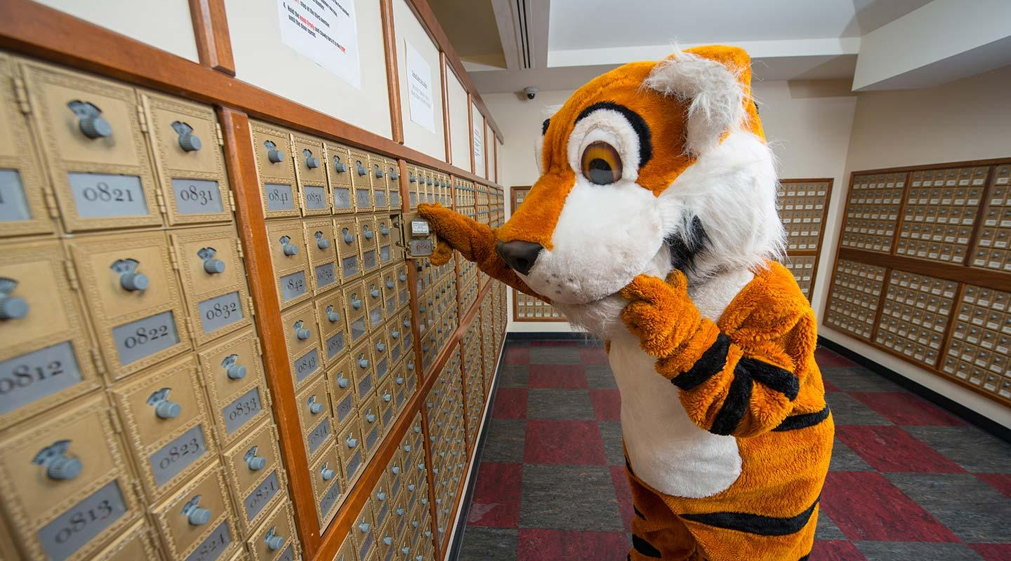 Oswald the Tiger checks his mail in Oxy's mailroom