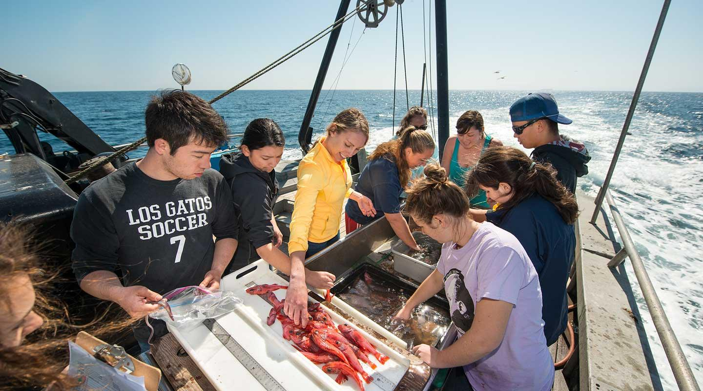 Students analyzing samples on a fishing boat on the ocean