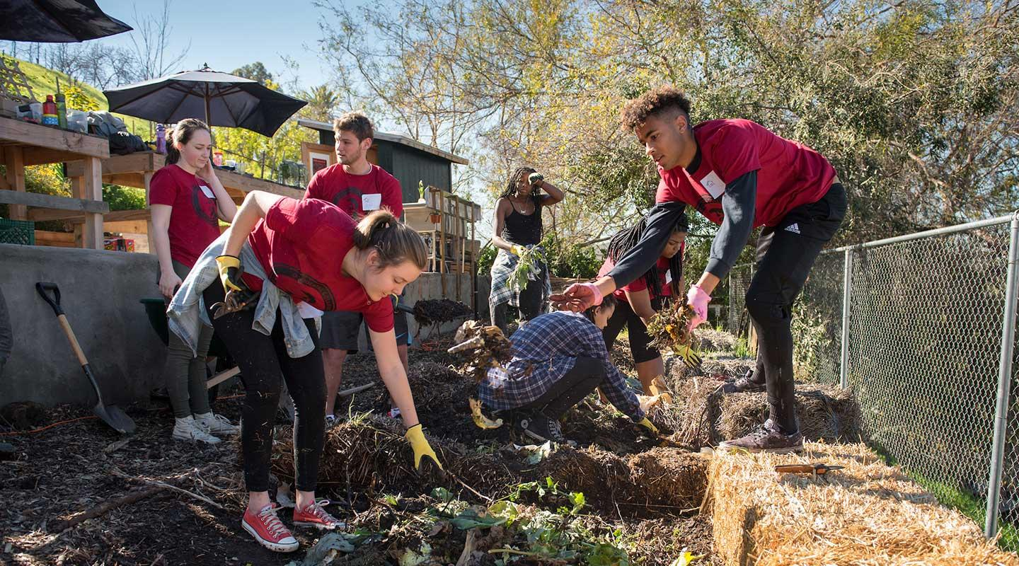 Oxy students volunteering for MLK Day