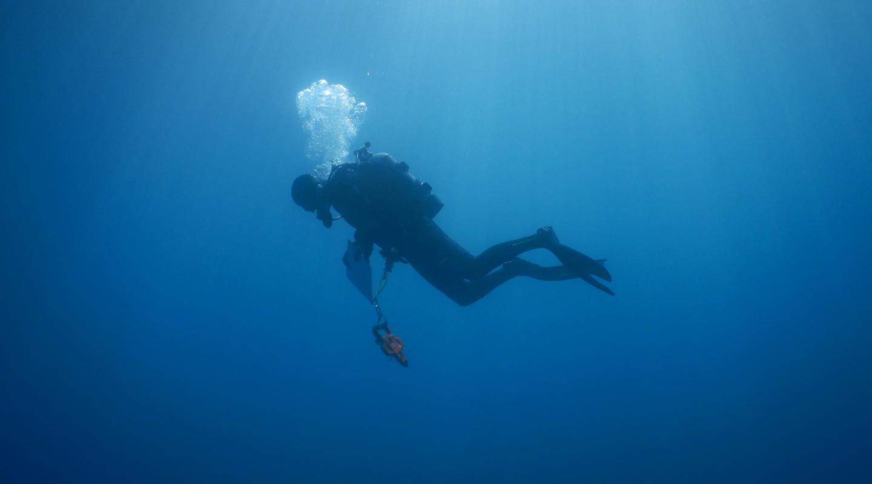Dan Pondella diving at Palos Verdes