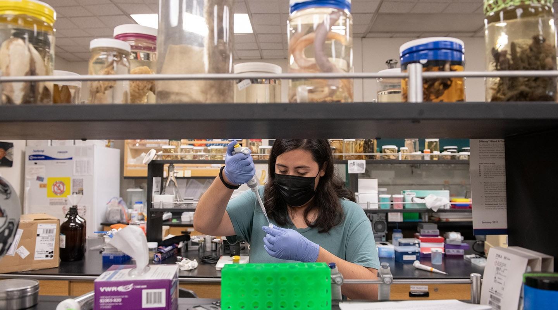 Anahy Lizarraga '23 in the biology lab