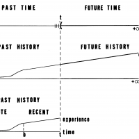 From Jan C. West (1971) Application of the Block-Wiener Mapping to a Homeostatic Learning System, Journal of Cybernetics 1:3, 64-78.