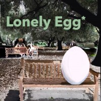 The Lonely Egg