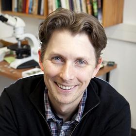 Professor Chris Oze