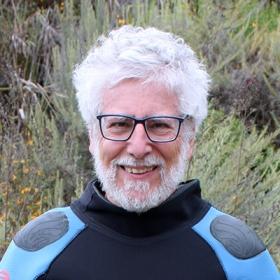 Professor Saul Traiger