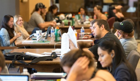 Students study together in the Academic Commons