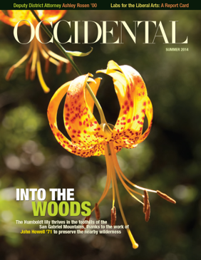 Two bright yellow and orange flowers. Cover story: Into the Woods
