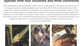 Image for Kris Kaiser: Urban impacts on herpetofauna: evidence from species from four countries and three continents