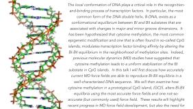 Image for Paul Nerenberg: Does cytosine methylation stabilize the BI state of DNA?