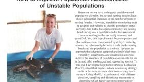 Image for Susan Piacenza - Fathoming Sea Turtles