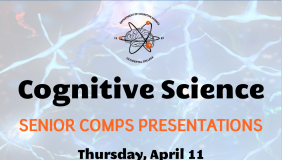 Poster for Cognitive Science comps