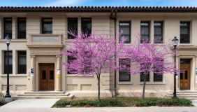 Swan Hall with flowering trees