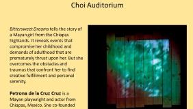 Poster for Petrona de la Cruz Cruz performance