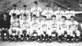 Bill Anderson, 1954 baseball team