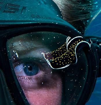 Alumnus Morgan Bennett Smith sea diving